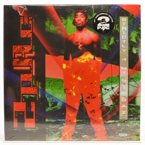 Strictly 4 My N.I.G.G.A.Z... (2LP), 1993